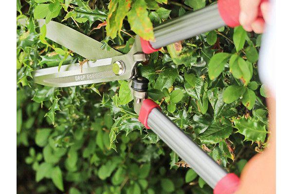 Kent & Stowe Drop Forged Hedge Shears